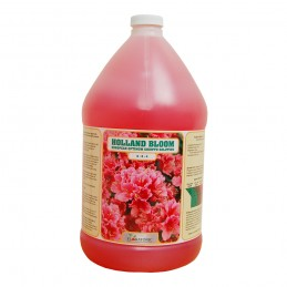 Holland Bloom 4 Litres